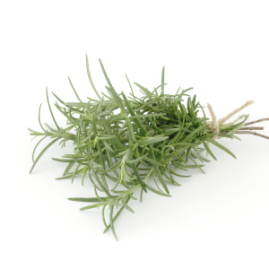 Rosemary Oil  Rosmarinus Officinalis
